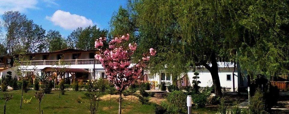Termál Apartman Nyírbátorban, felszerelt apartmanjaink várják Önt a Sárkány Fürdő közelében!