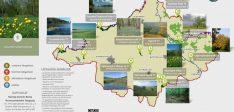 A Felső-Tisza vidék és a Nyírség természeti látnivalói